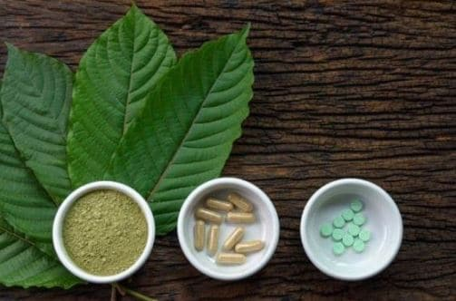 Kratom – Everything You Should Know Before Consumption