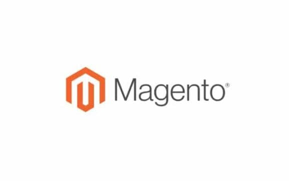 Professional Magento 2 Ecommerce Developer