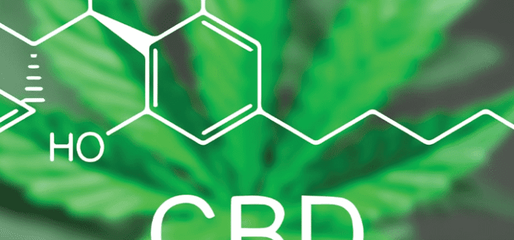 CBD and Its Usefulness – Great Insights to Know